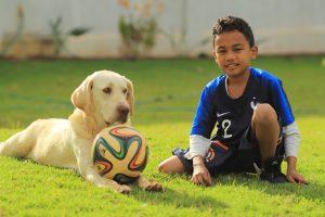 Pes zachránil gól po kikse futbalového brankára